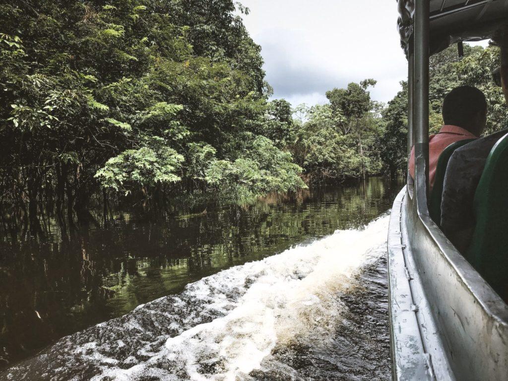 O que fazer na Floresta Amazônica - Roteiro de 3 dias (1/3)