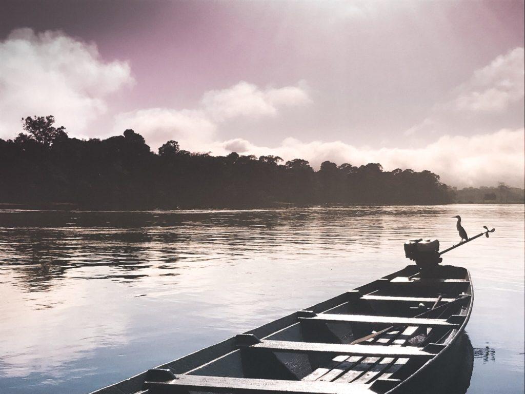O que fazer na Floresta Amazônica - Roteiro de 3 dias (2/3)