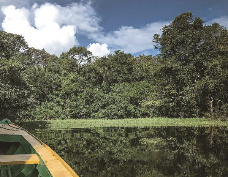 O que fazer em Manaus – Roteiro de 2 dias