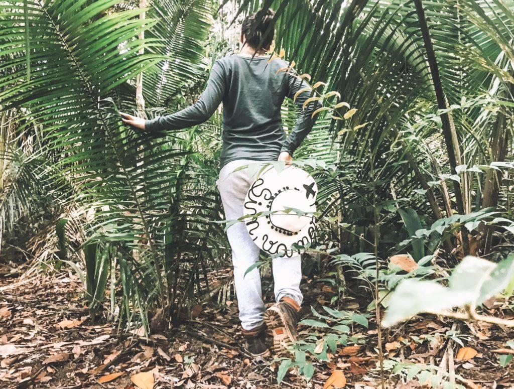 O que fazer na Floresta Amazônica - Roteiro de 3 dias (3/3)